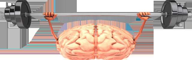 Healthy Brain: How to Avoid Dementia