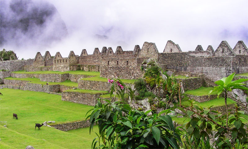 Journey to Peru with Dr. Sheila Mitchell